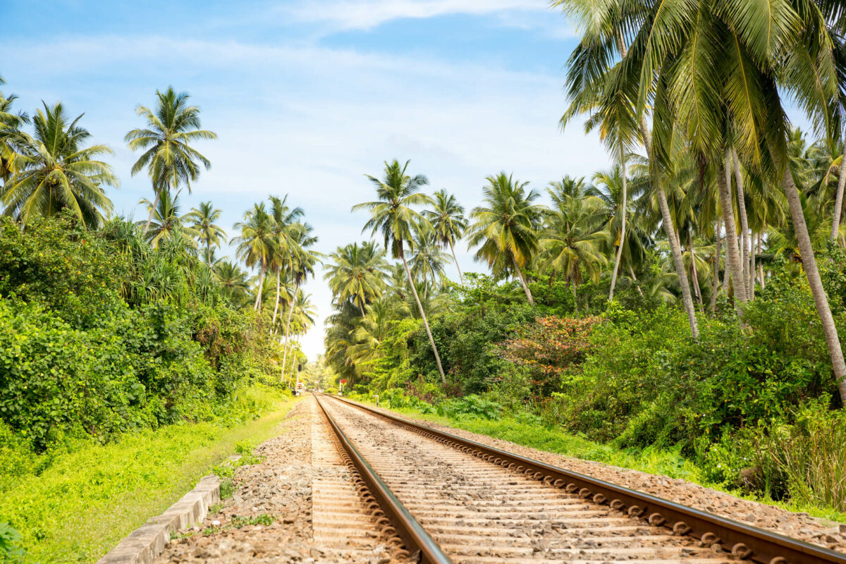Cheapest Way To Travel To Sri Lanka From India